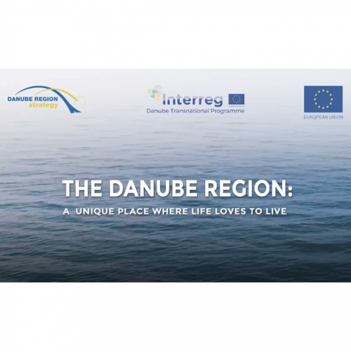 Danube Region Strategy Interactive Movie